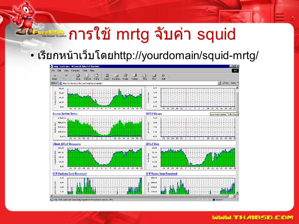 การใช้ mrtg จับค่า squid เรียกหน้าเว็บโดย http://yourdomain/squid-mrtg/