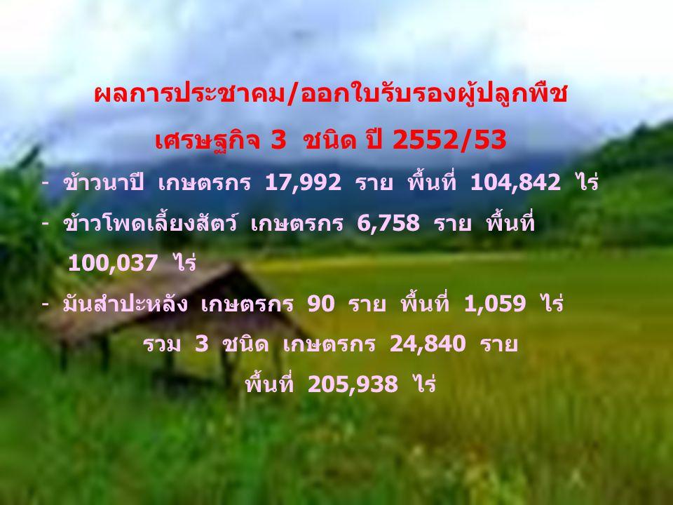ผลการประชาคม/ออกใบรับรองผู้ปลูกพืช เศรษฐกิจ 3 ชนิด ปี 2552/53 - ข้าวนาปี เกษตรกร 17,992 ราย พื้นที่ 104,842 ไร่ - ข้าวโพดเลี้ยงสัตว์ เกษตรกร 6,758 ราย