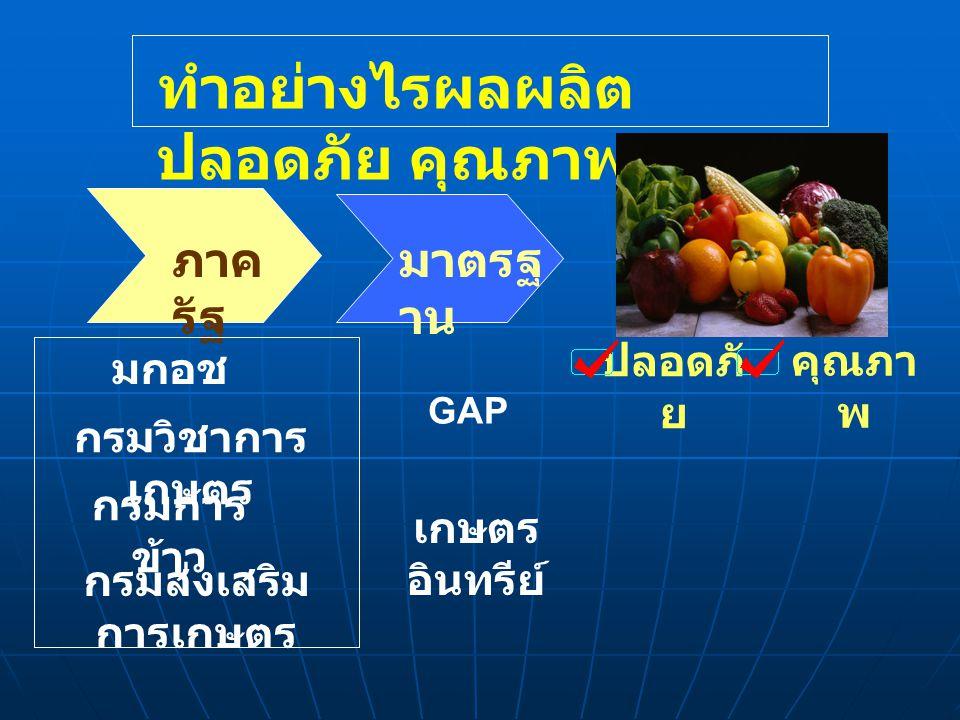 มาตรฐ าน ภาค รัฐ คุณภา พ ปลอดภั ย เกษตร อินทรีย์ GAP มกอช ทำอย่างไรผลผลิต ปลอดภัย คุณภาพ กรมวิชาการ เกษตร กรมการ ข้าว กรมส่งเสริม การเกษตร