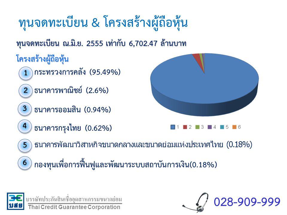 บรรษัทประกันสินเชื่ออุตสาหกรรมขนาดย่อม Thai Credit Guarantee Corporation ทุนจดทะเบียน ณ.มิ.ย. 2555 เท่ากับ 6,702.47 ล้านบาท โครงสร้างผู้ถือหุ้น กระทรว