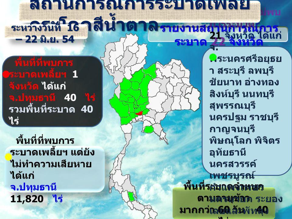รายงานสถานการณ์การ ระบาด 22 จังหวัด พื้นที่ระบาดจำแนก ตามอายุข้าว มากกว่า 60 วัน 40 ไร่ พื้นที่ระบาดจำแนก ตามอายุข้าว มากกว่า 60 วัน 40 ไร่ พื้นที่ที่