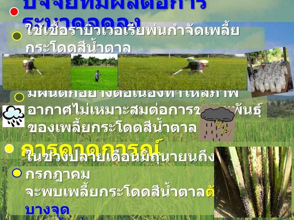 กรมส่งเสริมการเกษตร ในส่วนที่เกี่ยวข้องมีกิจกรรมดังนี้ 1.