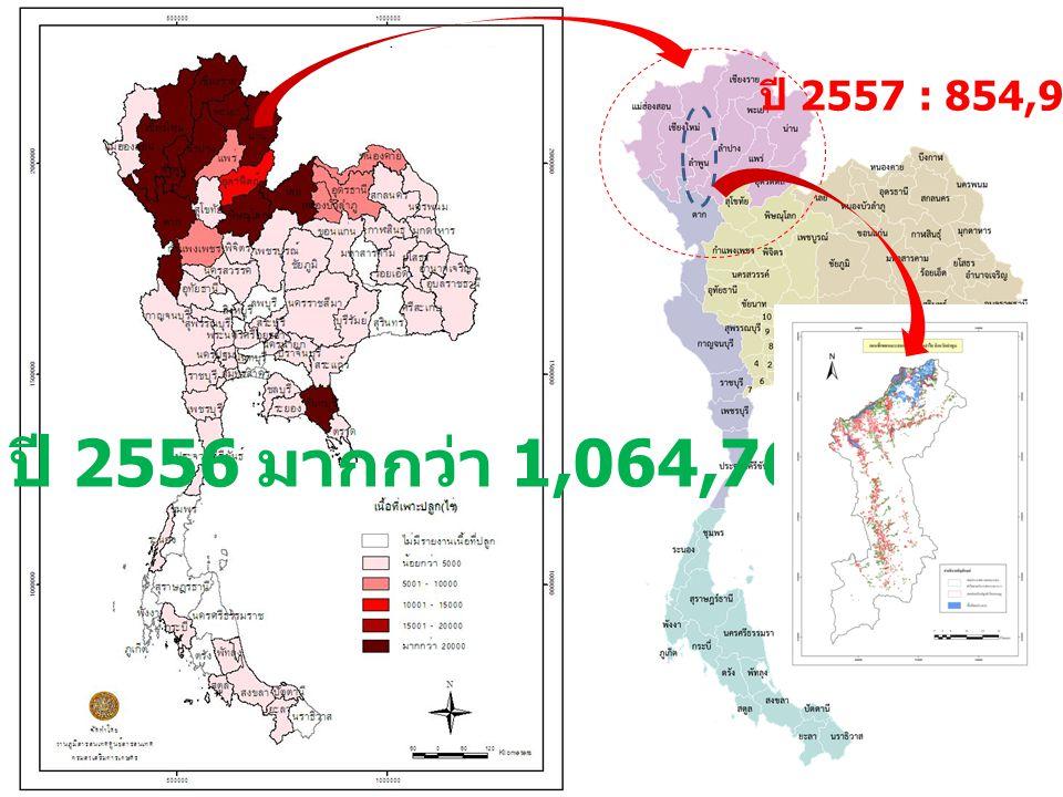 ปี 2556 มากกว่า 1,064,762 ไร่ ปี 2557 : 854,916 ไร่ (1)1