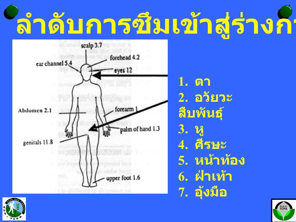ลำดับการซึมเข้าสู่ร่างกายทางผิวหนัง 1. ตา 2. อวัยวะ สืบพันธุ์ 3. หู 4. ศีรษะ 5. หน้าท้อง 6. ฝ่าเท้า 7. อุ้งมือ