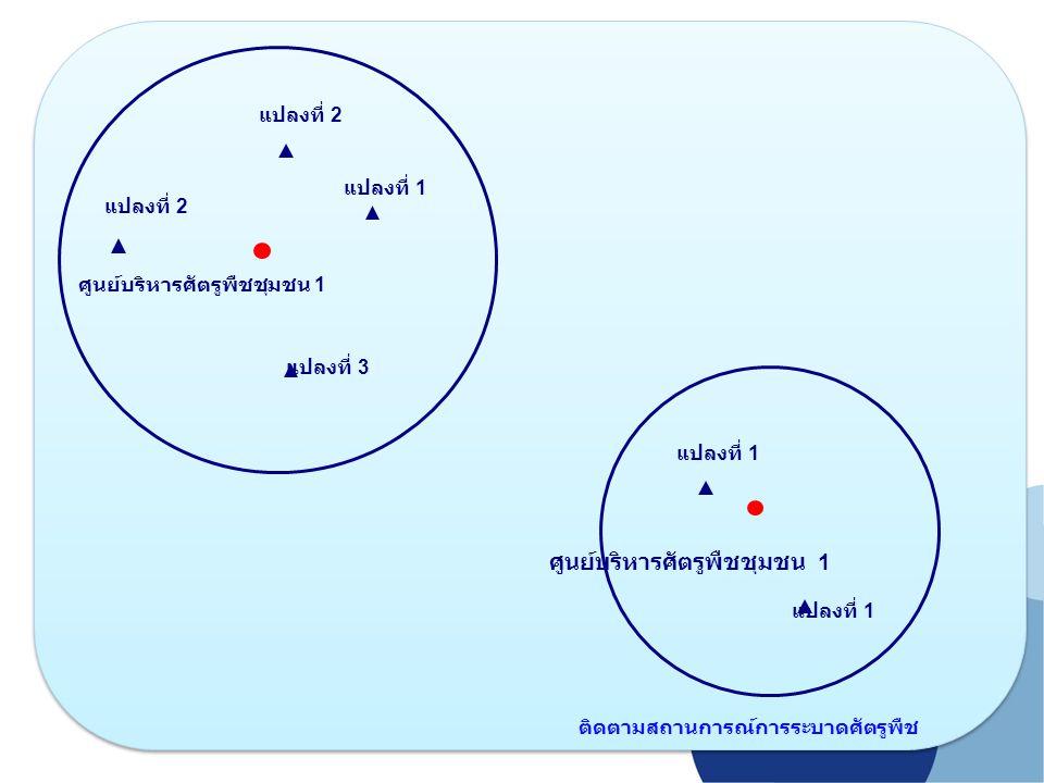 ศูนย์บริหารศัตรูพืชชุมชน 1 แปลงที่ 1 แปลงที่ 2 แปลงที่ 3 แปลงที่ 1 ติดตามสถานการณ์การระบาดศัตรูพืช