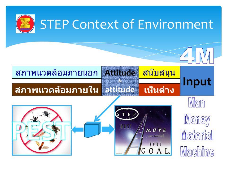 STEP Context of Environment สภาพแวดล้อมภายนอก สภาพแวดล้อมภายใน Attitude & attitude สนับสนุน เห็นต่าง Input