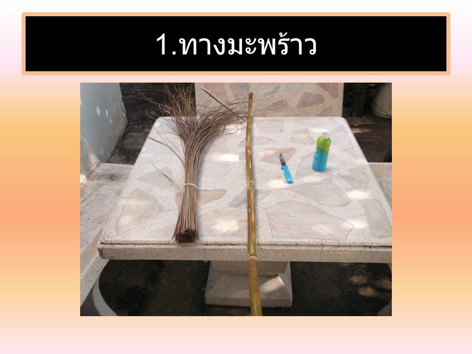 1. ทางมะพร้าว
