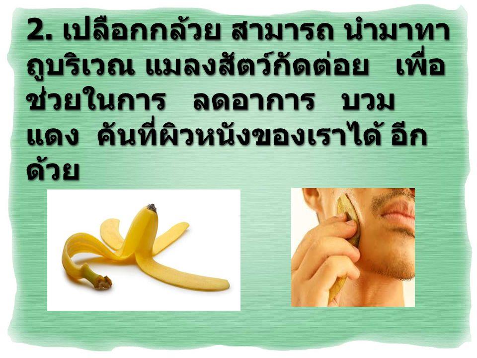 2. เปลือกกล้วย สามารถ นำมาทา ถูบริเวณ แมลงสัตว์กัดต่อย เพื่อ ช่วยในการ ลดอาการ บวม แดง คันที่ผิวหนังของเราได้ อีก ด้วย
