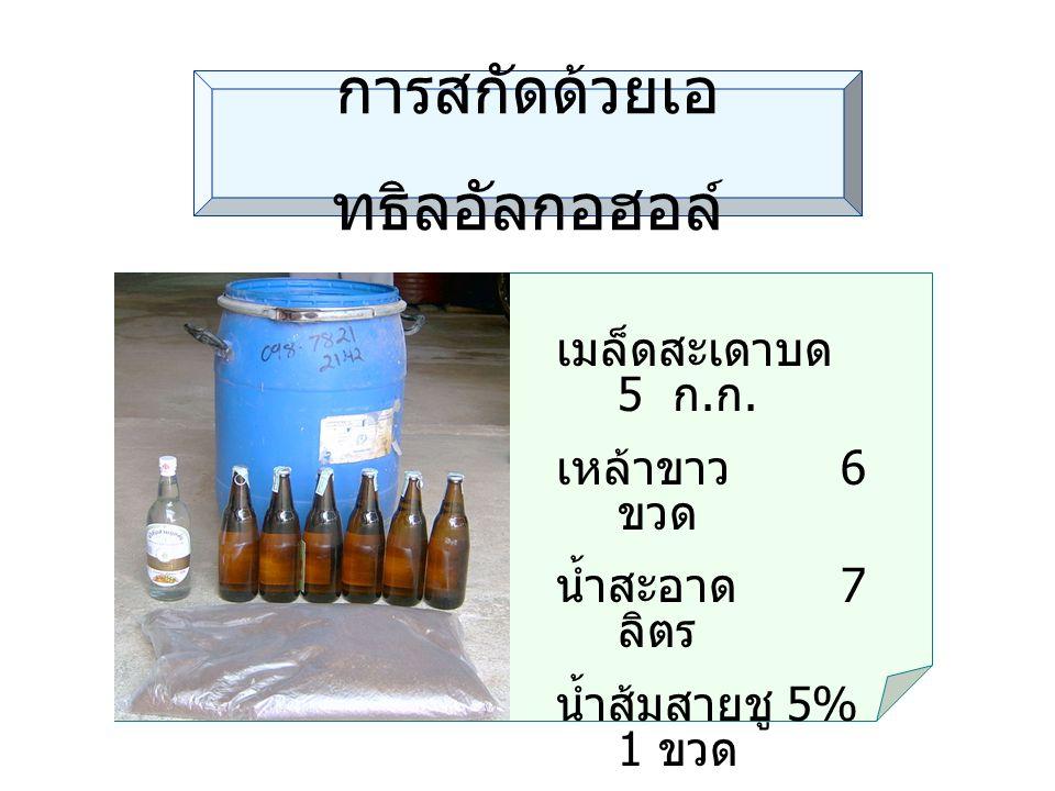 การสกัดด้วยเอ ทธิลอัลกอฮอล์ วัสดุ อุปกร ณ์ เมล็ดสะเดาบด 5 ก. ก. เหล้าขาว 6 ขวด น้ำสะอาด 7 ลิตร น้ำส้มสายชู 5% 1 ขวด ภาชนะสำหรับหมัก