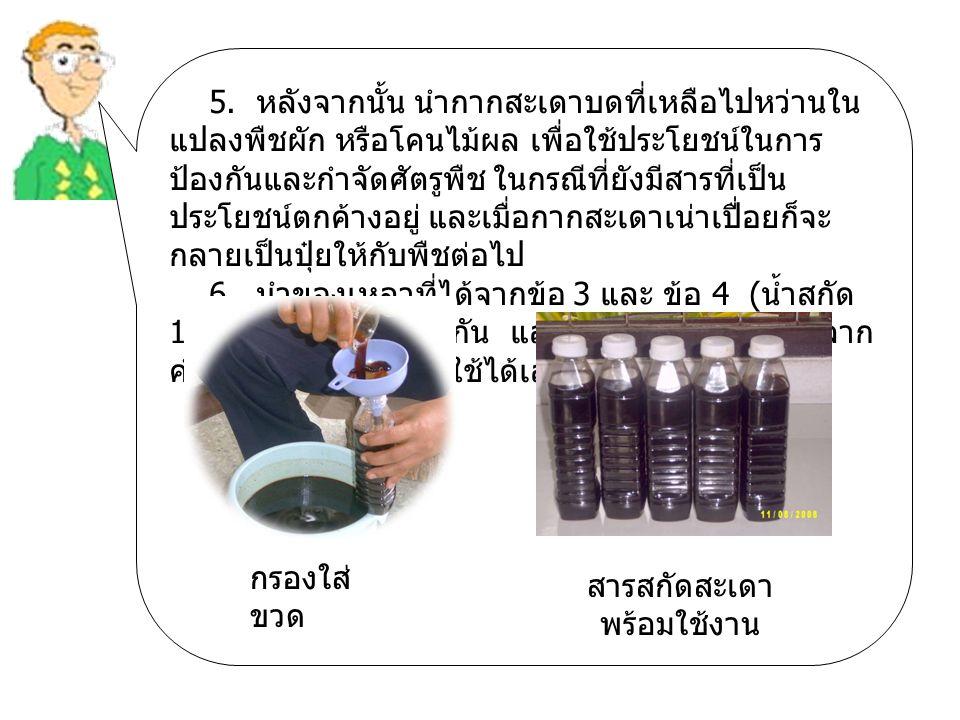 5. หลังจากนั้น นำกากสะเดาบดที่เหลือไปหว่านใน แปลงพืชผัก หรือโคนไม้ผล เพื่อใช้ประโยชน์ในการ ป้องกันและกำจัดศัตรูพืช ในกรณีที่ยังมีสารที่เป็น ประโยชน์ตก