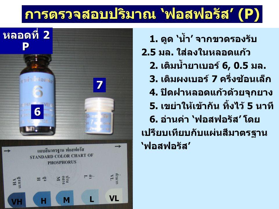 การตรวจสอบปริมาณ 'ฟอสฟอรัส' (P) 1. ดูด 'น้ำ' จากขวดรองรับ 2.5 มล. ใส่ลงในหลอดแก้ว 2. เติมน้ำยาเบอร์ 6, 0.5 มล. 3. เติมผงเบอร์ 7 ครึ่งซ้อนเล็ก 4. ปิดฝา