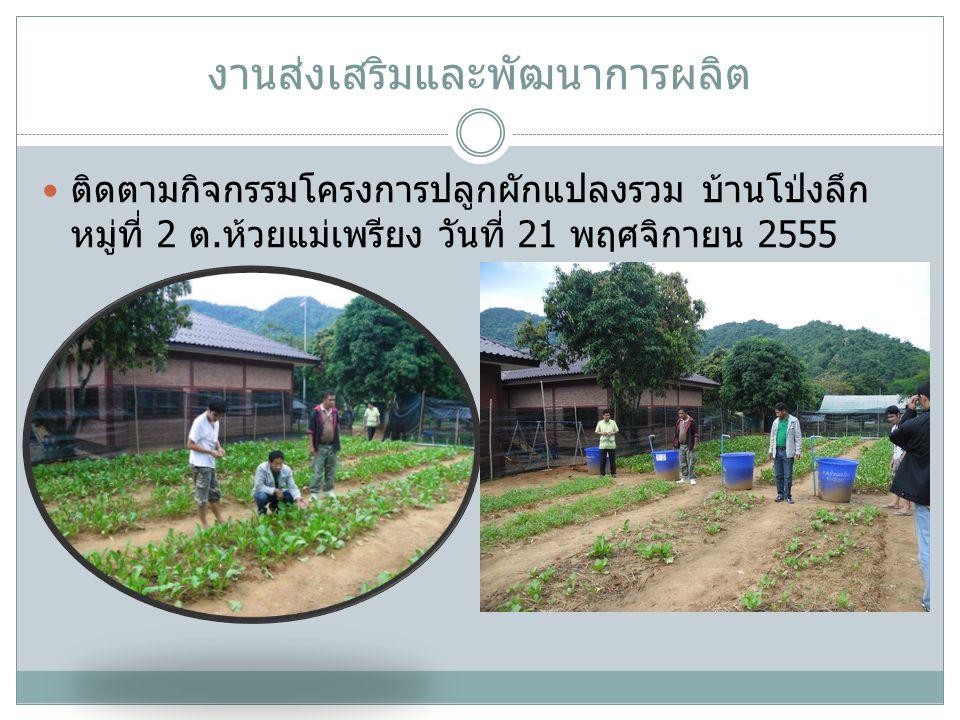 งานส่งเสริมและพัฒนาการผลิต ติดตามกิจกรรมโครงการปลูกผักแปลงรวม บ้านโป่งลึก หมู่ที่ 2 ต. ห้วยแม่เพรียง วันที่ 21 พฤศจิกายน 2555