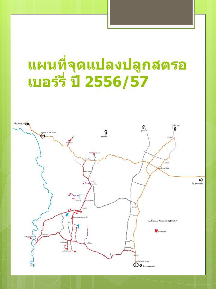 แผนที่จุดแปลงปลูกสตรอ เบอร์รี่ ปี 2556/57