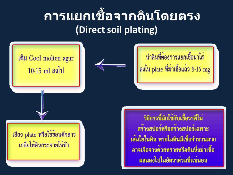การแยกเชื้อจากดินโดยตรง (Direct soil plating)