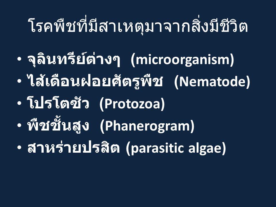 โรคพืชที่มีสาเหตุมาจากสิ่งมีชีวิต จุลินทรีย์ต่างๆ (microorganism) ไส้เดือนฝอยศัตรูพืช (Nematode) โปรโตซัว (Protozoa) พืชชั้นสูง (Phanerogram) สาหร่ายปรสิต (parasitic algae)