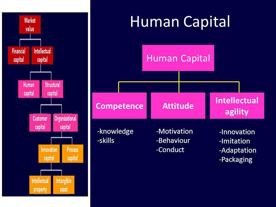 Human Capital CompetenceAttitude Intellectual agility -knowledge -skills -Motivation -Behaviour -Conduct -Innovation -Imitation -Adaptation -Packaging