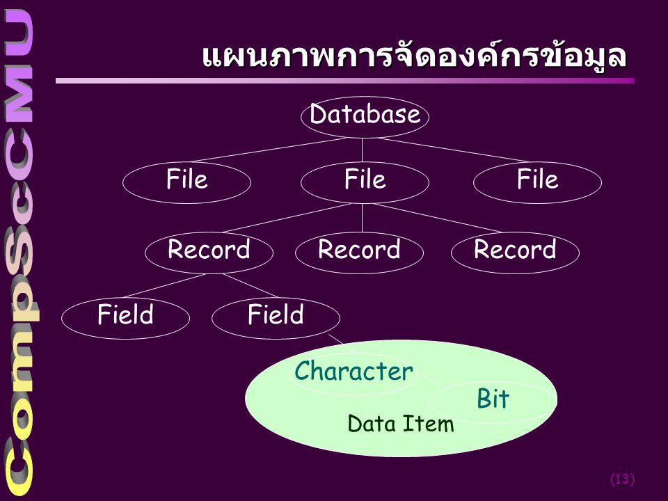(13) แผนภาพการจัดองค์กรข้อมูล Data Item Database File Record Field Character Bit