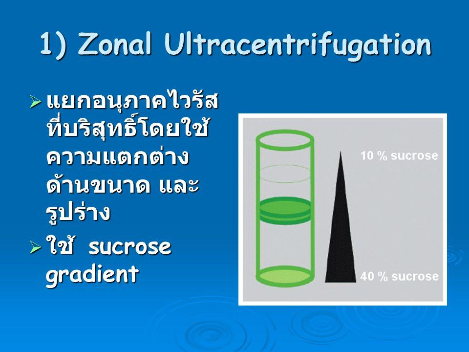 1) Zonal Ultracentrifugation  แยกอนุภาคไวรัส ที่บริสุทธิ์โดยใช้ ความแตกต่าง ด้านขนาด และ รูปร่าง  ใช้ sucrose gradient
