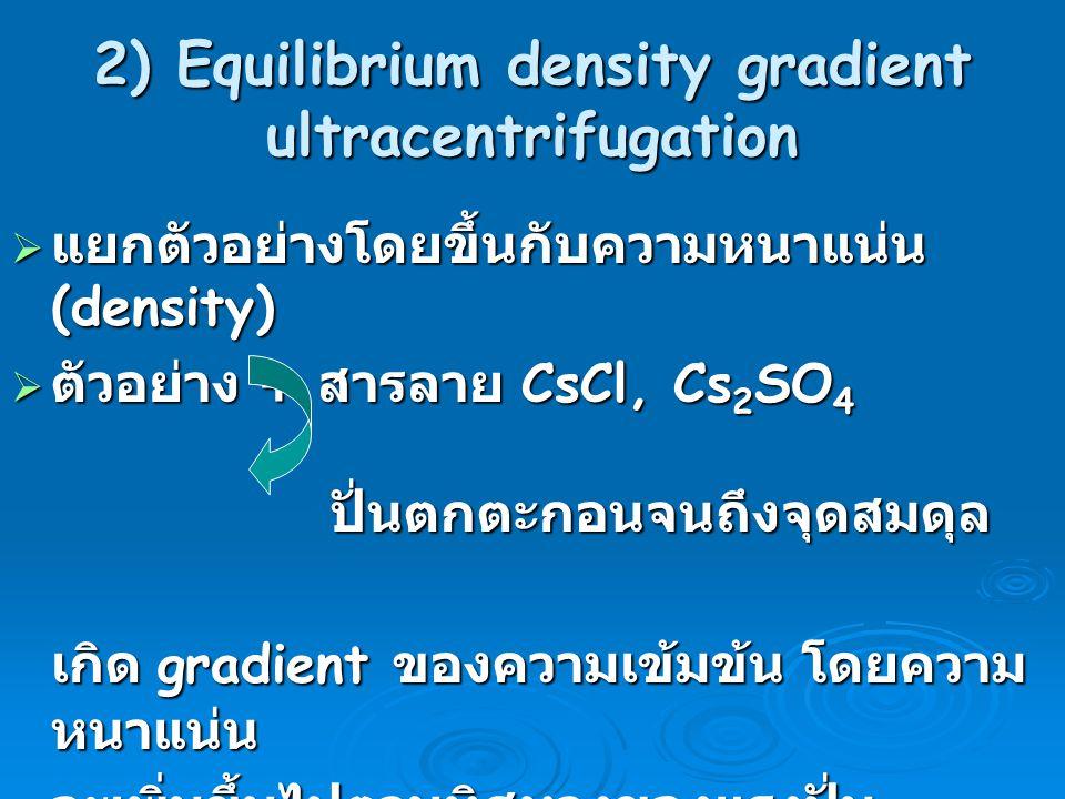 2) Equilibrium density gradient ultracentrifugation  แยกตัวอย่างโดยขึ้นกับความหนาแน่น (density)  ตัวอย่าง + สารลาย CsCl, Cs 2 SO 4 ปั่นตกตะกอนจนถึงจ