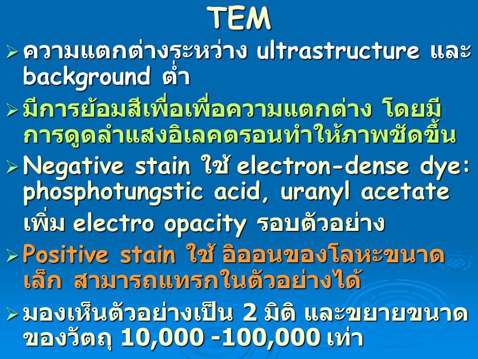 TEM  ความแตกต่างระหว่าง ultrastructure และ background ต่ำ  มีการย้อมสีเพื่อเพื่อความแตกต่าง โดยมี การดูดลำแสงอิเลคตรอนทำให้ภาพชัดขึ้น  Negative sta