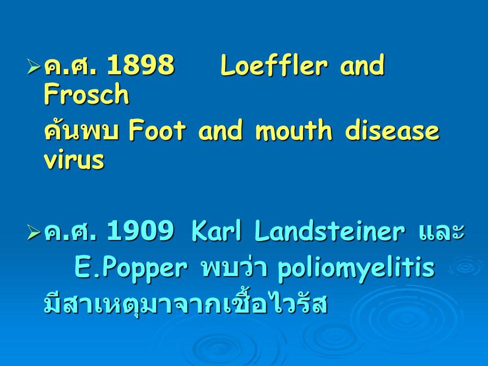  ค. ศ. 1898 Loeffler and Frosch ค้นพบ Foot and mouth disease virus  ค. ศ. 1909 Karl Landsteiner และ E.Popper พบว่า poliomyelitis มีสาเหตุมาจากเชื้อไ