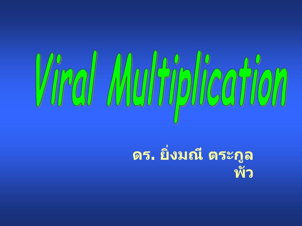ดร. ยิ่งมณี ตระกูล พัว