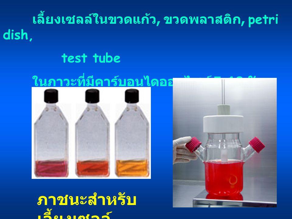 ภาชนะสำหรับ เลี้ยงเซลล์ เลี้ยงเซลล์ในขวดแก้ว, ขวดพลาสติก, petri dish, test tube ในภาวะที่มีคาร์บอนไดออกไซด์ 5-10 %