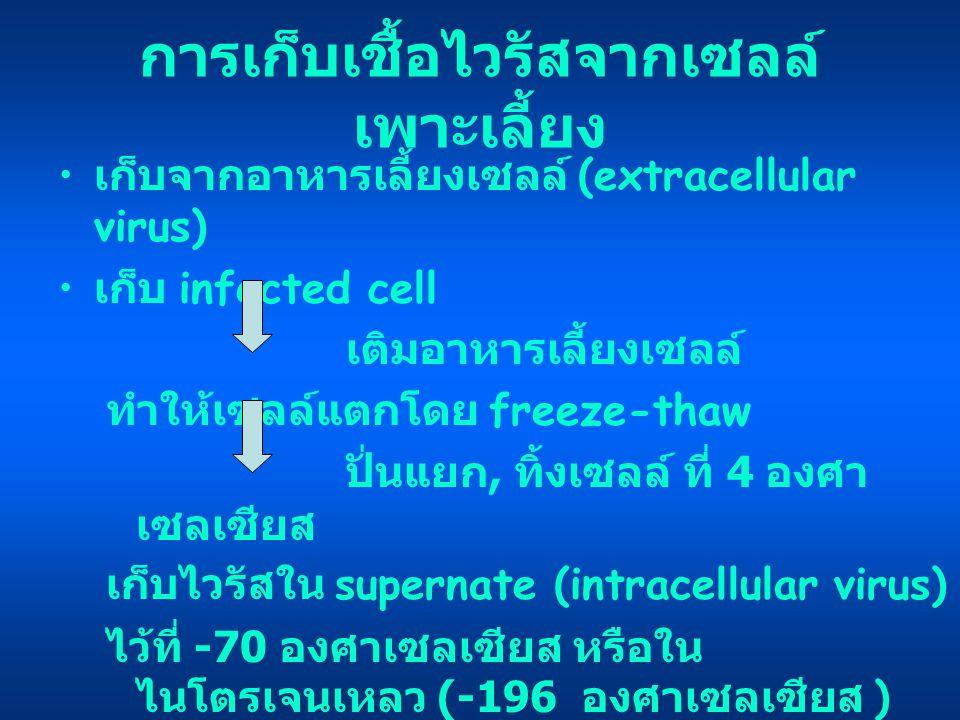 การเก็บเชื้อไวรัสจากเซลล์ เพาะเลี้ยง เก็บจากอาหารเลี้ยงเซลล์ (extracellular virus) เก็บ infected cell เติมอาหารเลี้ยงเซลล์ ทำให้เซลล์แตกโดย freeze-tha