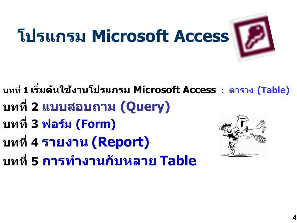 4 โปรแกรม Microsoft Access บทที่ 1 เริ่มต้นใช้งานโปรแกรม Microsoft Access : ตาราง (Table) บทที่ 2 แบบสอบถาม (Query) บทที่ 3 ฟอร์ม (Form) บทที่ 4 รายงา
