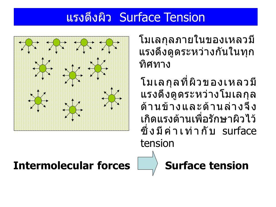 แรงตึงผิว Surface Tension โมเลกุลภายในของเหลวมี แรงดึงดูดระหว่างกันในทุก ทิศทาง โมเลกุลที่ผิวของเหลวมี แรงดึงดูดระหว่างโมเลกุล ด้านข้างและด้านล่างจึง
