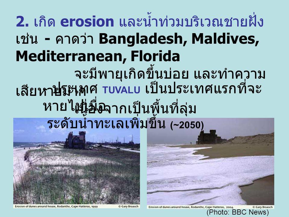 2. เกิด erosion และน้ำท่วมบริเวณชายฝั่ง เช่น - คาดว่า Bangladesh, Maldives, Mediterranean, Florida จะมีพายุเกิดขึ้นบ่อย และทำความ เสียหายมาก เนื่องจาก