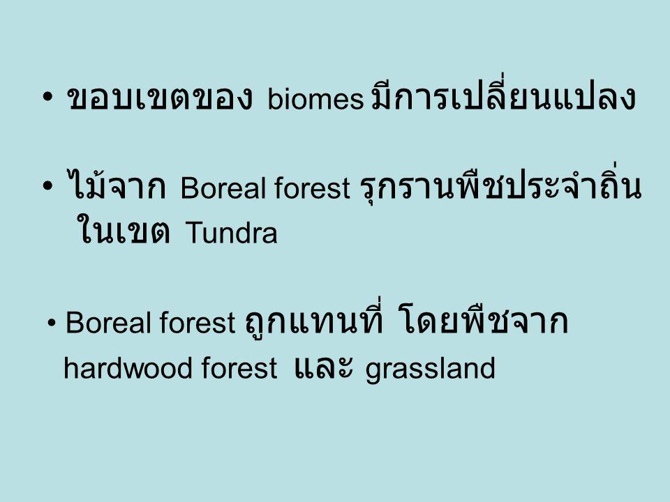 ขอบเขตของ biomes มีการเปลี่ยนแปลง ไม้จาก Boreal forest รุกรานพืชประจำถิ่น ในเขต Tundra Boreal forest ถูกแทนที่ โดยพืชจาก hardwood forest และ grassland