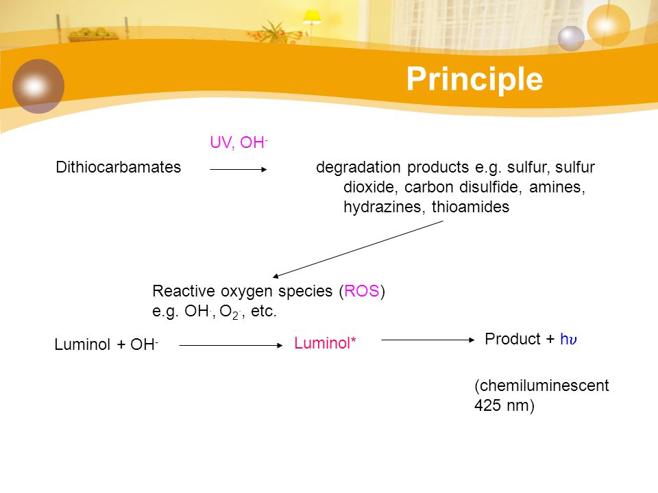 Principle Dithiocarbamates degradation products e.g. sulfur, sulfur dioxide, carbon disulfide, amines, hydrazines, thioamides UV, OH - Reactive oxygen