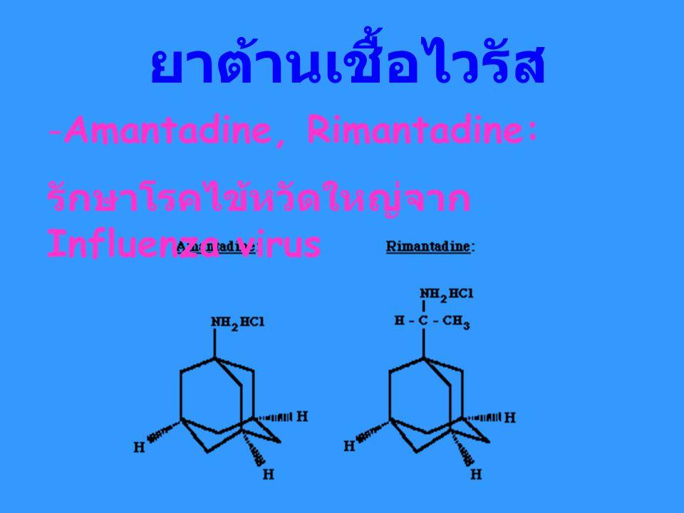 ยาต้านเชื้อไวรัส -Amantadine, Rimantadine: รักษาโรคไข้หวัดใหญ่จาก Influenza virus