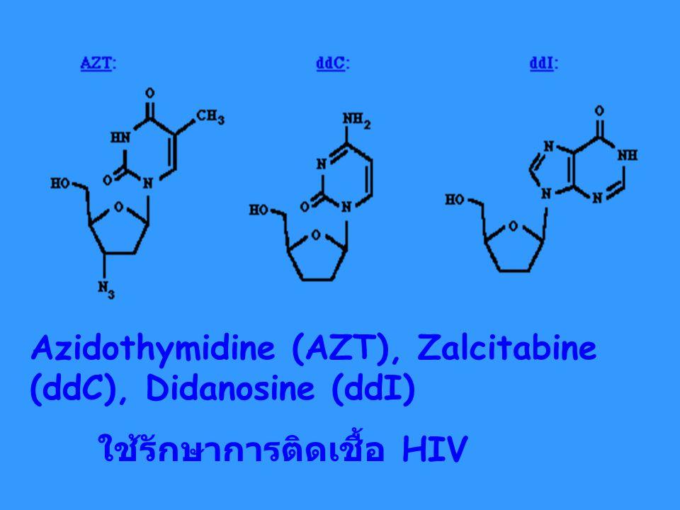 Azidothymidine (AZT), Zalcitabine (ddC), Didanosine (ddI) ใช้รักษาการติดเชื้อ HIV