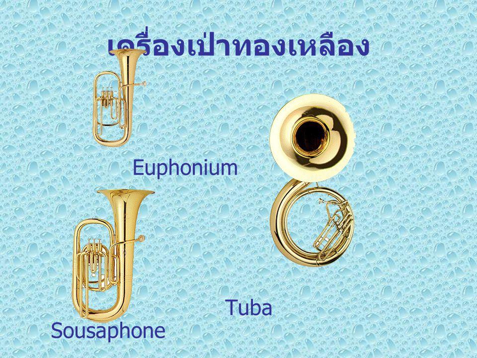 เครื่องเป่าทองเหลือง Euphonium Tuba Sousaphone