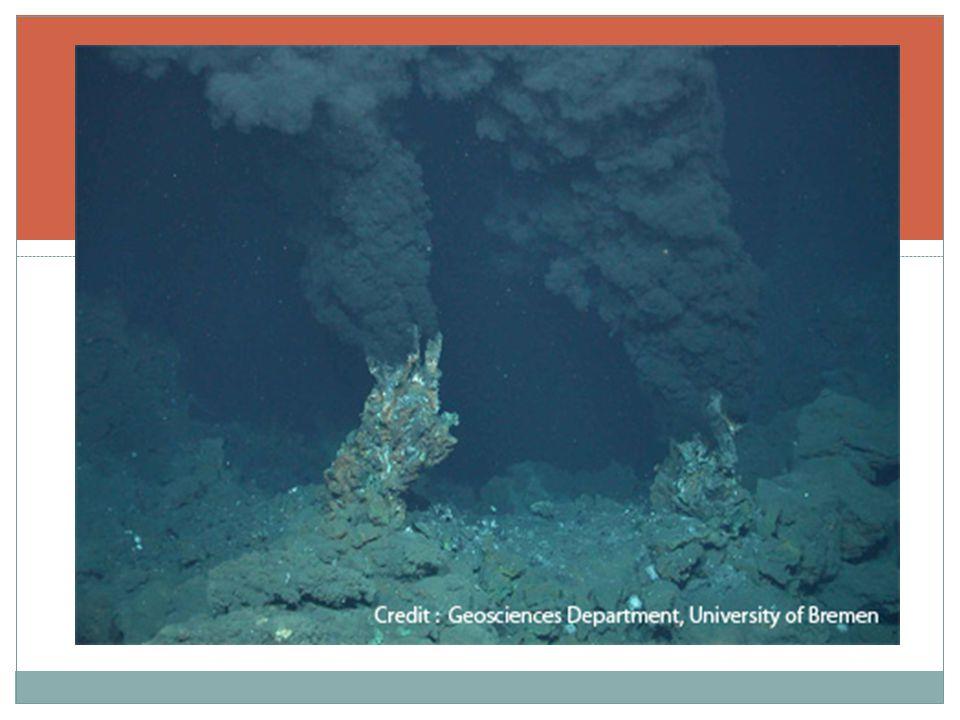 Oceanic Crust ( เปลือกโลกบริเวณพื้นท้องทะเล มหาสมุทร ) บริเวณ Black smoker hydrothermalvent ( ควันดำจาก ช่องระบายความร้อน ) แหล่งน้ำร้อนลึก ลงไปในเปลือกโลก พบ Bacteria มากกว่า 25,000 ตระกูล จากจำนวนที่ มีอยู่ 60,000 ชนิด