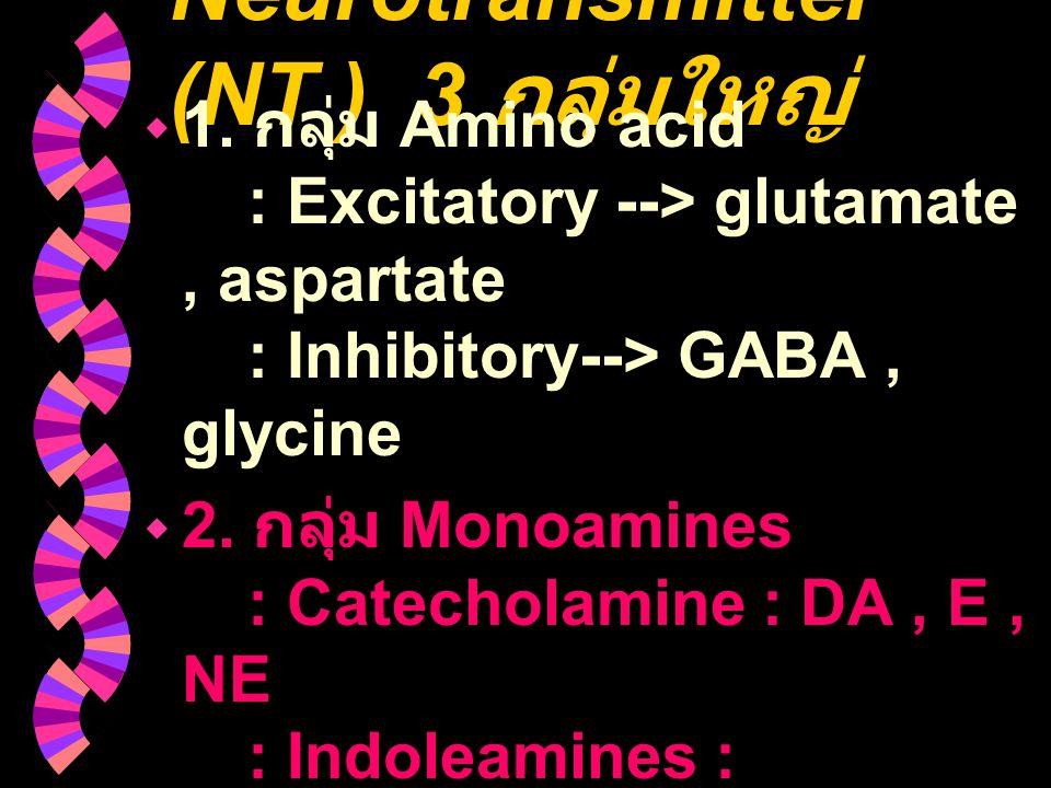 Neurotransmitter (NT ) 3 กลุ่มใหญ่  1. กลุ่ม Amino acid : Excitatory --> glutamate, aspartate : Inhibitory--> GABA, glycine  2. กลุ่ม Monoamines : C