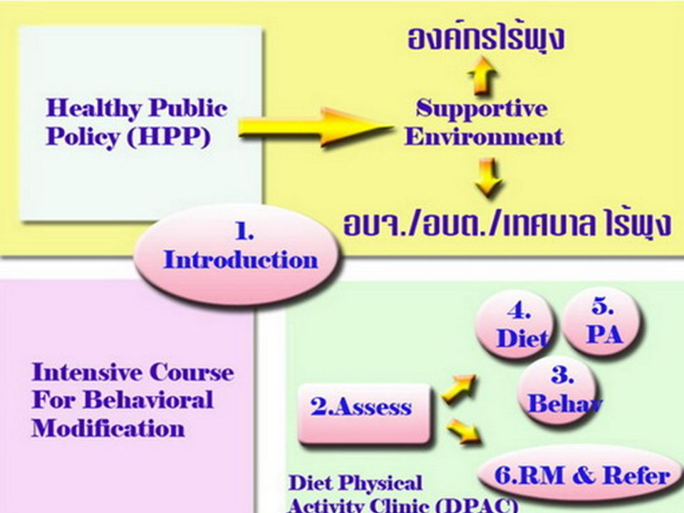 (Thailand Healthy Lifestyle Strategy)