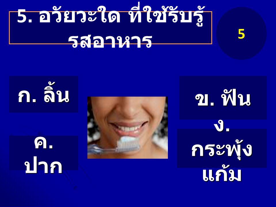 5. อวัยวะใด ที่ใช้รับรู้ รสอาหาร 5 ก. ลิ้น ข. ฟัน ค. ปาก ง. กระพุ้ง แก้ม