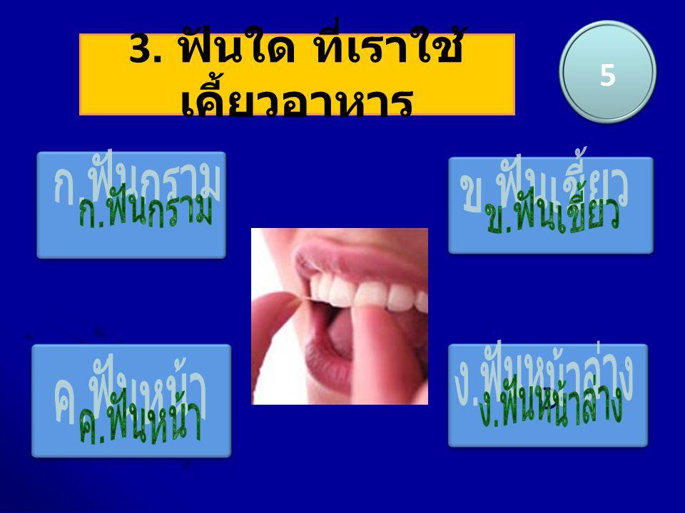 D 3. ฟันใด ที่เราใช้ เคี้ยวอาหาร 5
