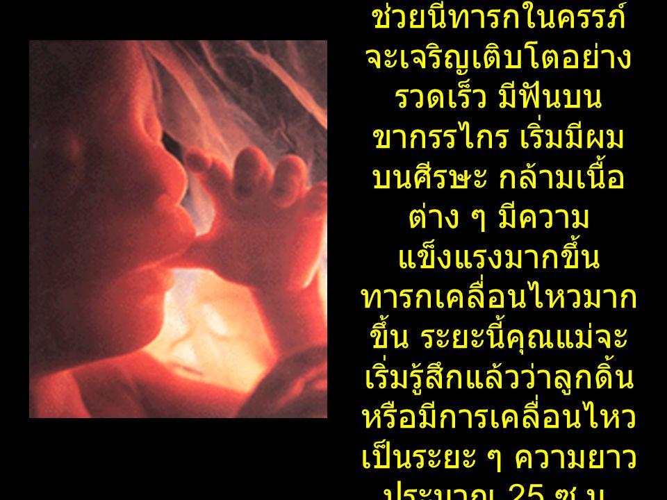 เดือนที่ 5 ช่วยนี้ทารกในครรภ์ จะเจริญเติบโตอย่าง รวดเร็ว มีฟันบน ขากรรไกร เริ่มมีผม บนศีรษะ กล้ามเนื้อ ต่าง ๆ มีความ แข็งแรงมากขึ้น ทารกเคลื่อนไหวมาก