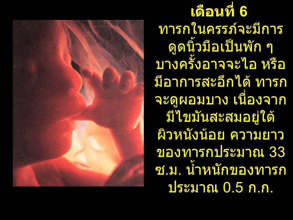 เดือนที่ 6 ทารกในครรภ์จะมีการ ดูดนิ้วมือเป็นพัก ๆ บางครั้งอาจจะไอ หรือ มีอาการสะอึกได้ ทารก จะดูผอมบาง เนื่องจาก มีไขมันสะสมอยู่ใต้ ผิวหนังน้อย ความยา