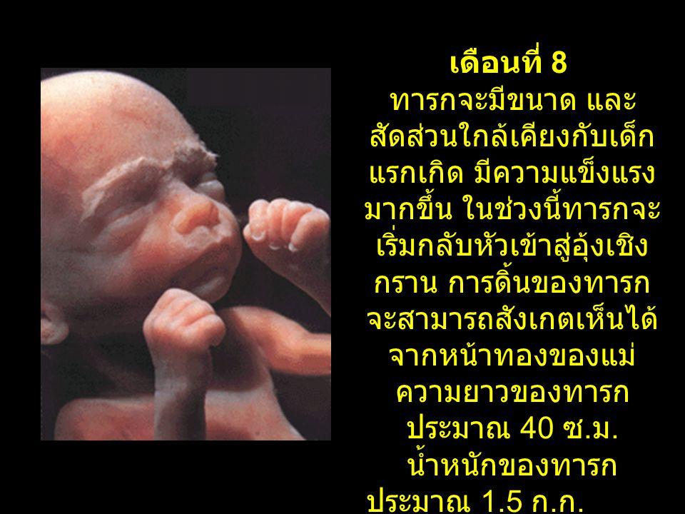 เดือนที่ 8 ทารกจะมีขนาด และ สัดส่วนใกล้เคียงกับเด็ก แรกเกิด มีความแข็งแรง มากขึ้น ในช่วงนี้ทารกจะ เริ่มกลับหัวเข้าสู่อุ้งเชิง กราน การดิ้นของทารก จะสา