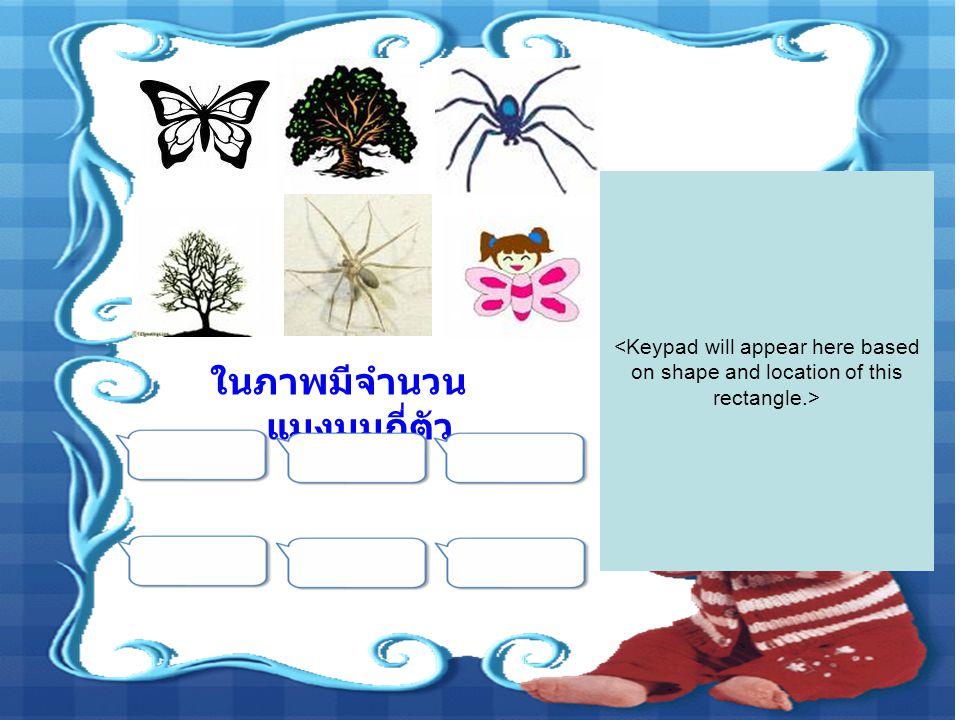 ในภาพมีจำนวน แมงมุมกี่ตัว
