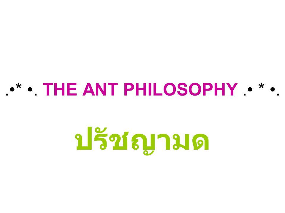 .*. THE ANT PHILOSOPHY. *. ปรัชญามด