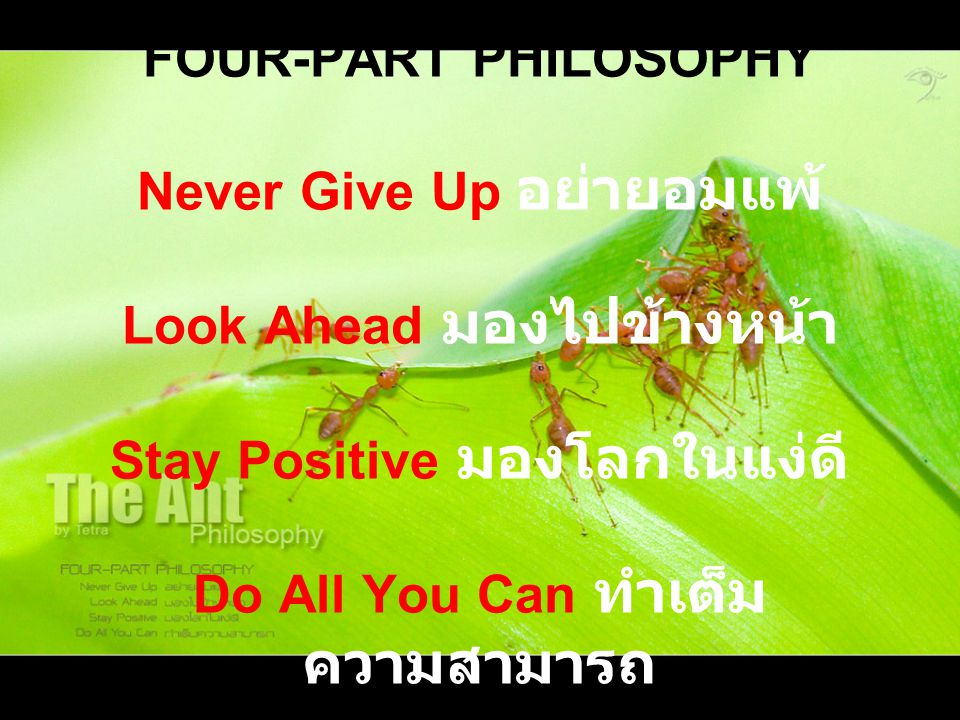 FOUR-PART PHILOSOPHY Never Give Up อย่ายอมแพ้ Look Ahead มองไปข้างหน้า Stay Positive มองโลกในแง่ดี Do All You Can ทำเต็ม ความสามารถ