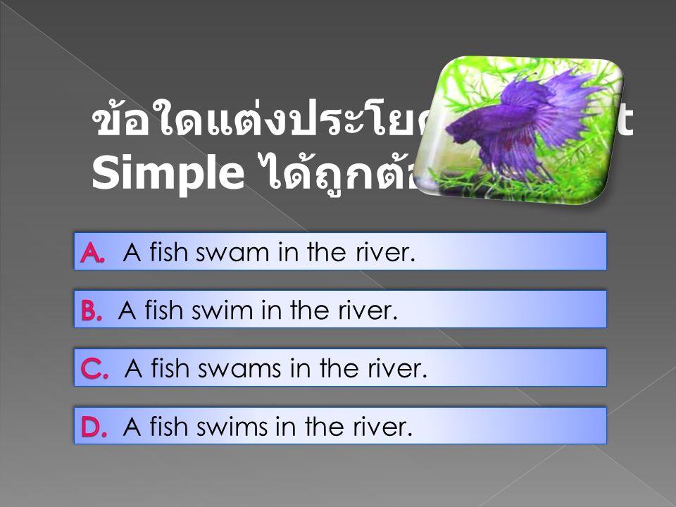 ข้อใดแต่งประโยค Present Simple ได้ถูกต้อง