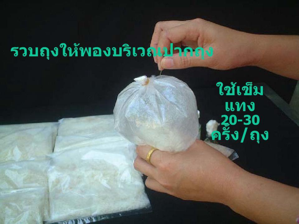 รวบถุงให้พองบริเวณปากถุง ใช้เข็ม แทง 20-30 ครั้ง / ถุง