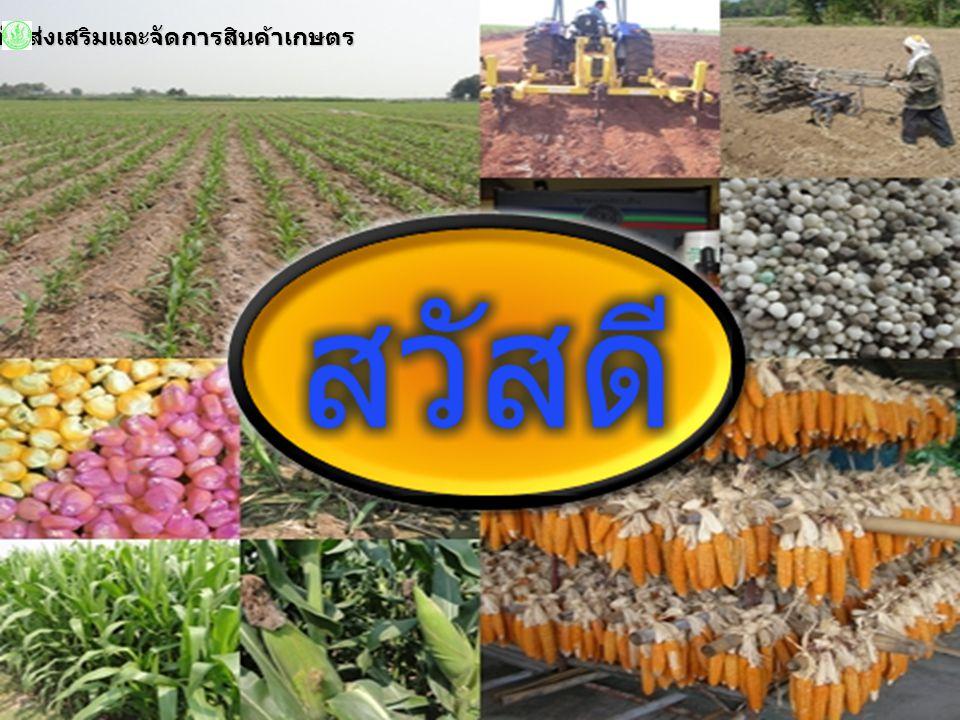สำนักส่งเสริมและจัดการสินค้าเกษตร